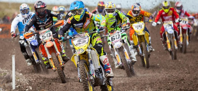Irwin, Bradshaw and Gibson talk Foxhill!