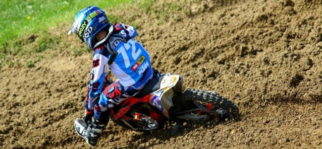 EMX65 & EMX85: Results from Germany