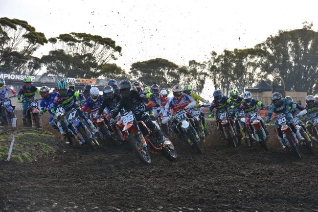 Entry Lists: 2019 FIM Junior Motocross World Championship