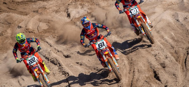 Gallery: Cairoli, Prado and Guadagnini new look for 2021